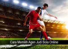 Cara Memilih Agen Judi Bola Online
