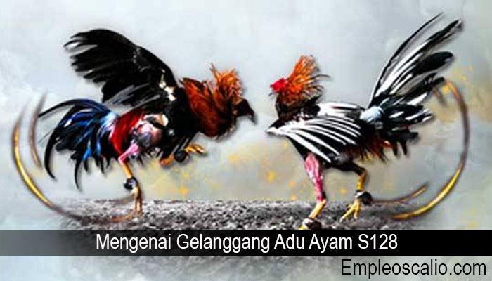 Mengenai Gelanggang Adu Ayam S128