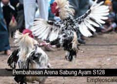 Pembahasan Arena Sabung Ayam S128
